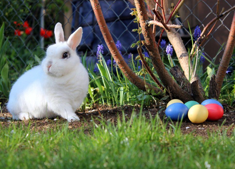 Wielkanocna symbolika
