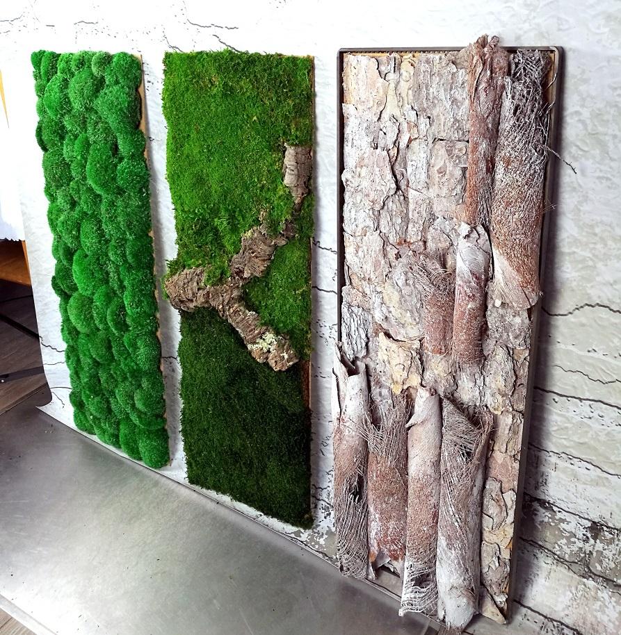 Obrazy z mchu stabilizowanego Natura 100 cm x35 cm kpl.