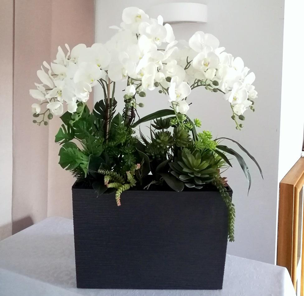 Białe storczyki w szarej donicy nr 260