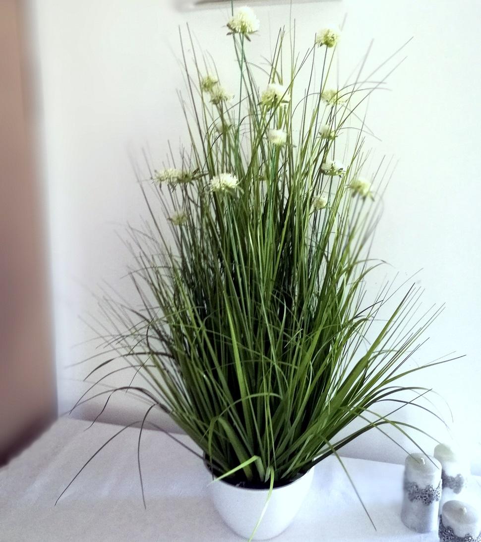 Dekoracja trawy i sukulenty