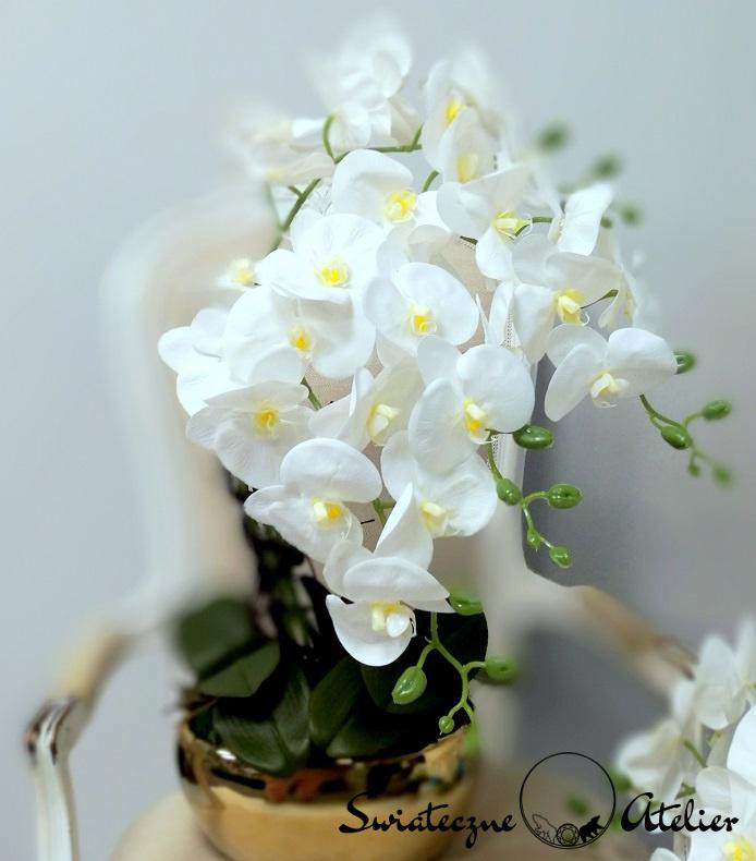 Białe storczyki w złotej donicy 1 nr 373