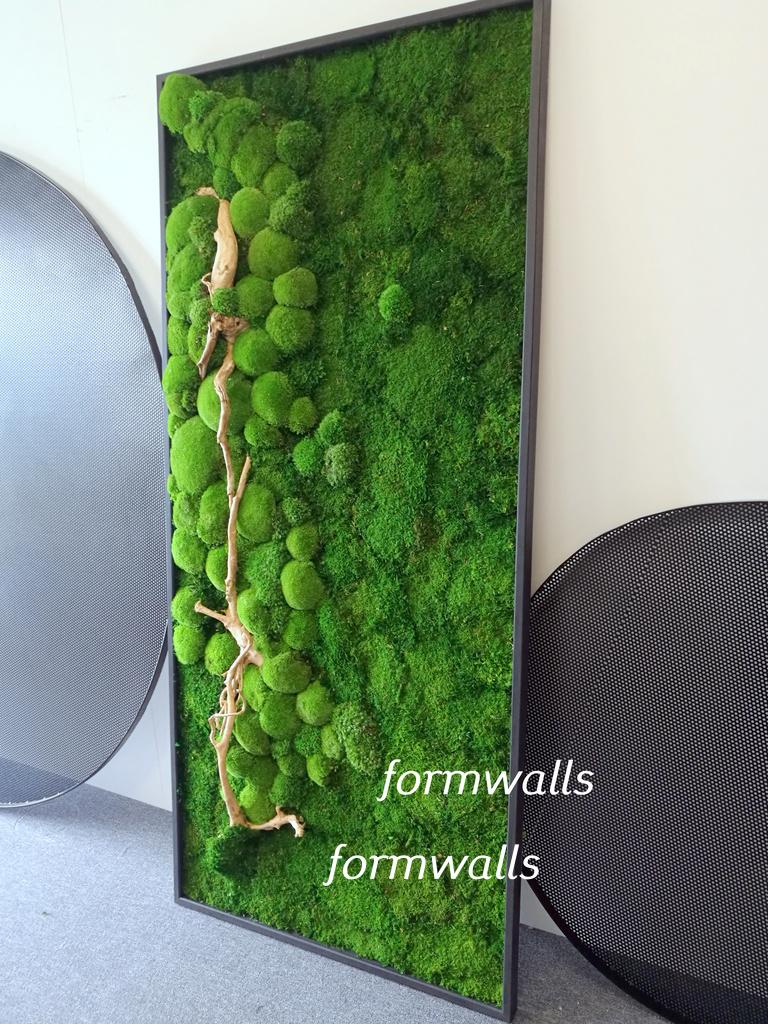 Obraz z mchów stabilizowanych 200 x 90 cm